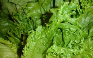 The U.S. Officially Declares an End to The Leafy Green Outbreak