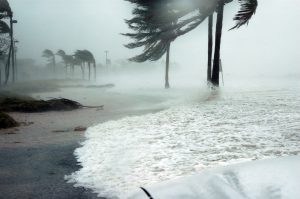 Food Safety Tips After Hurricane Dorian and other Natural Disaster